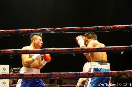 boxing in mexico